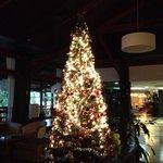 ロビーに飾られていたクリスマスツリー