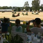 the horse show