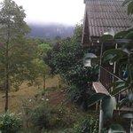 Exterior of Khao sok wood bungalow
