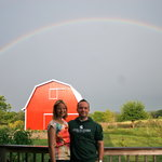 Somewhere under the rainbow at Springdale Inn