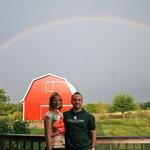 Somewhere under the rainbow at Springdale Inn