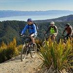 Tasman Bay and beyond, Nelson