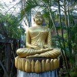 Buddha statue in the garden