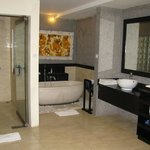 Huge Bathroom with Tub and Shower