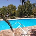 Pileta de natación principal
