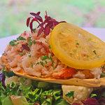 (SUMMER)Dressed Solva Crab