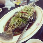 Steamed sea bass with soy sauce