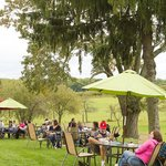 enjoy the brandywine valley at penns woods winery