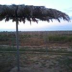 uitzicht bungalow over het natuurgebied