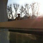 vetri sporchi e finestra in legno