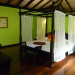 """Casita Forest"" room"