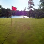 Pinehurst Course Number 8