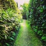 Walkway to Bayu 1