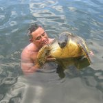 Hubby Swimming with the Turtles