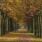 Foto de Herrenkrug Park
