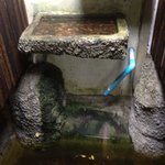 bathroom water going to pond at front door