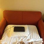 narrow and lumpy sofabud with mini-pillow small/medium lapto