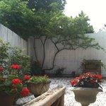 Diana's garden
