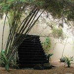 very impressive spa garden...