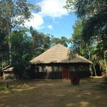 Eco-lodge setting