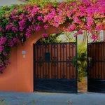 Casa Bella Maria Bed & Breakfast Photo