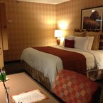 Crowne Plaza Silicon Valley North-Union City Photo