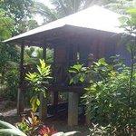 Zen Gardens Photo