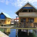 Starfish cabin