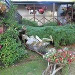 Gardens area