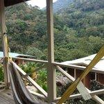 Hammock and Balcony of my Cabin #5