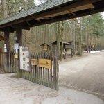 Walderlebniszentrum Tennenlohe