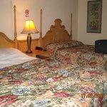 2 Amplias camas tipo sommier