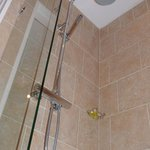Willow Bank House, Orchid Shower