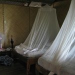 Beds with mosquito netting and room's fan.