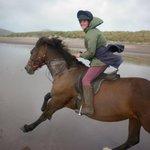 Beach trek at Dingle horse riding