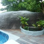 Privacy rock and fish pond.