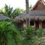 les bungalows et le jardin