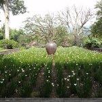 garden@ mesastila