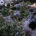 spectacular stone garden