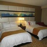 Room 1017