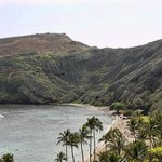 Discover Half Day Tour Oahu