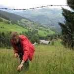 Picking wild strawberries at the end of our valley