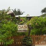ภาพถ่ายของ OASI