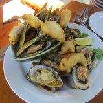 Mussel sampler