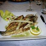 Perfect fish fillet