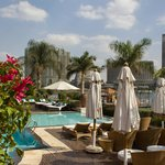 The infinity pool overlooking the Nile