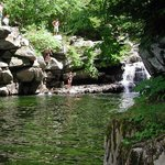 Bristol Falls (As Known Barlett Falls)