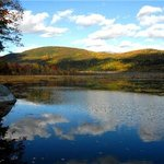 Bristol Pond