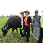 Tour mit Wasserbüffel