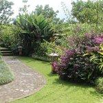 Garden at one villa